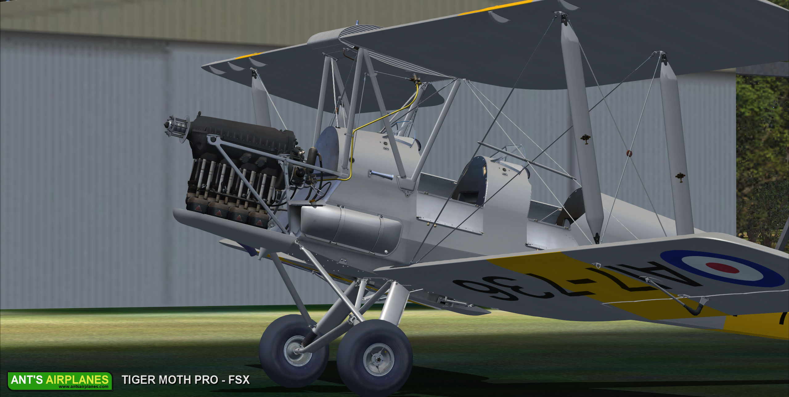 ANTS AIRPLANES - TIGER MOTH PRO FSX P3D