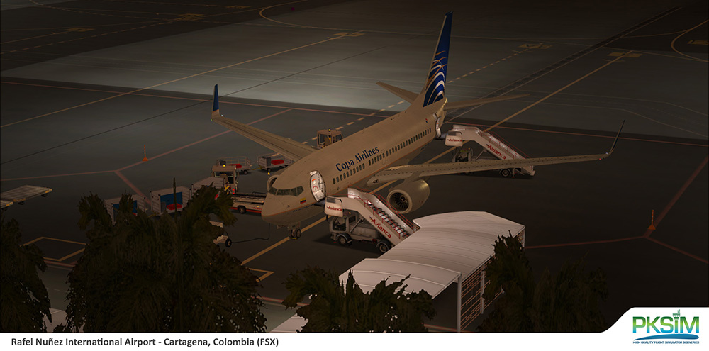 PKSIM - RAFAEL NUNEZ INTERNATIONAL SKCG FSX