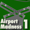 BIG FAT SIMULATIONS - AIRPORT MADNESS 1