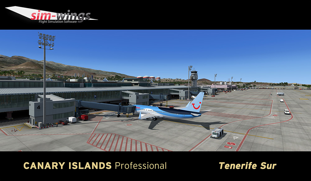 AEROSOFT - CANARY ISLANDS PROFESSIONAL - TENERIFE SUR P3D4