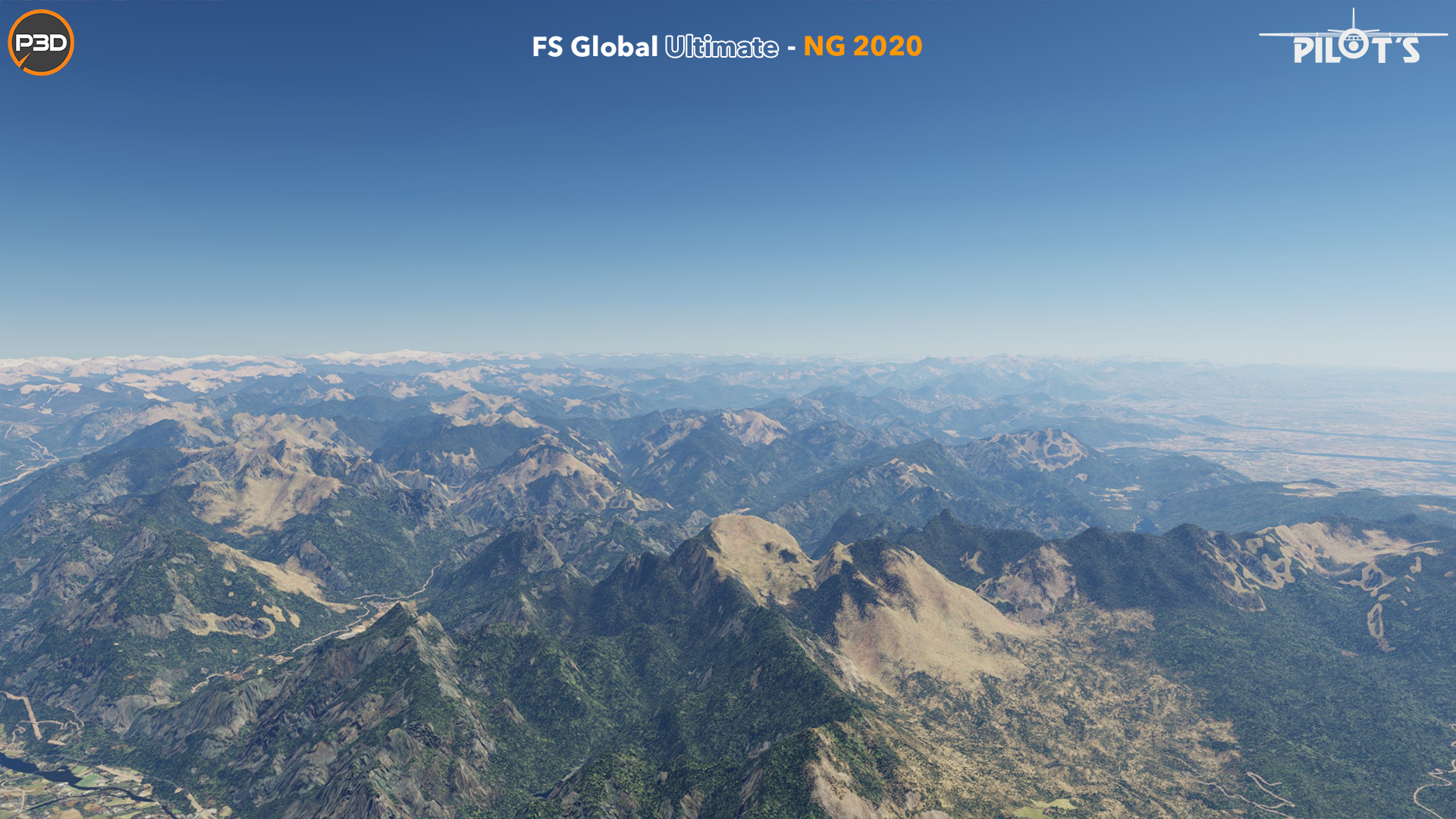 PILOT'S FSG - FS GLOBAL ULTIMATE - NG 2020 FTX P3D