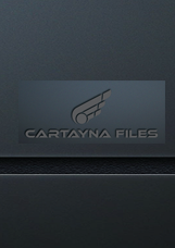 CARTAYNA FILES GSX LEVEL 2 配置文件