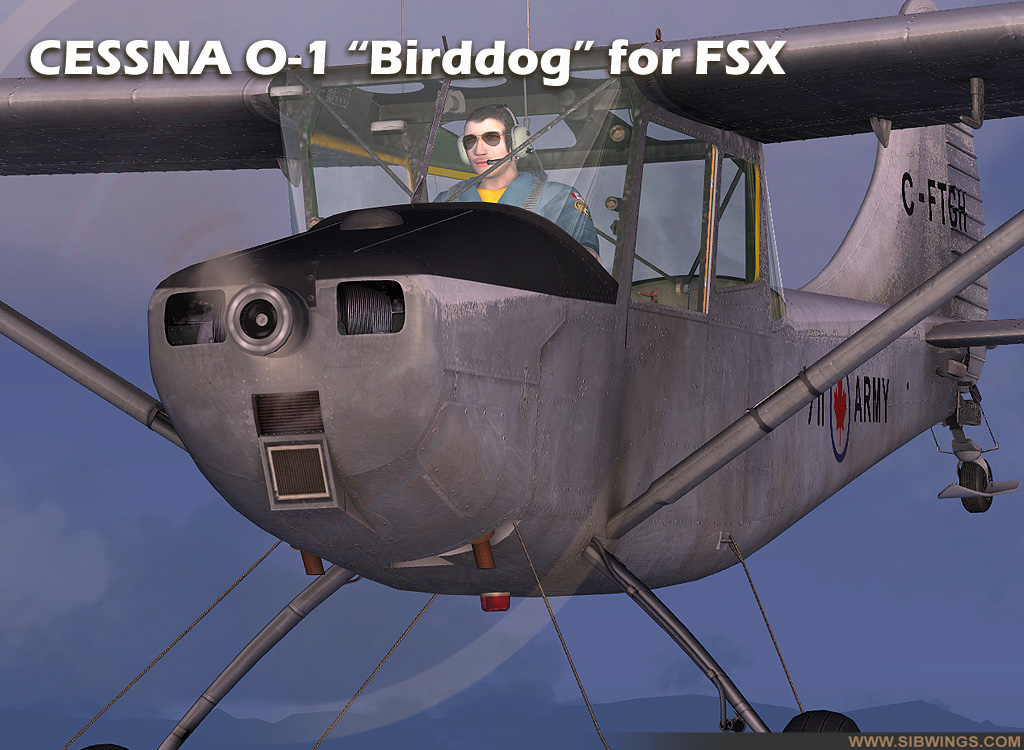 SIBWINGS - CESSNA O-1/L-19 BIRD DOG