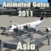 FLYSIMWARE LLC - ANIMATED GATES 2011 ASIA/MEXICO/CARIBBEANS