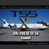 TURBINE SOUND STUDIOS - TSS CRJ-200 GE-CF34 SOUNDPACK FOR FSX