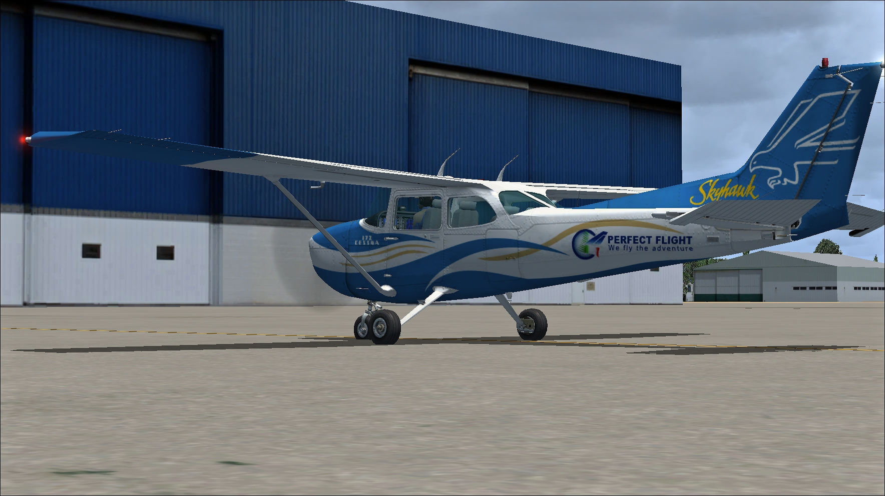 PERFECT FLIGHT - PRIVATE FLIGHTS - CESSNA 172SP FSX P3D