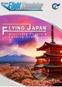 PERFECT FLIGHT - FLYING JAPAN MSFS