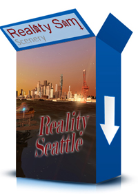 REALITY SIM SCENERY - REALITY SEATTLE FSX P3D