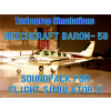 TURBOPROP SIMULATIONS - BEECHCRAFT BARON 58 SOUNDPACK FSX